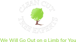 Clean Cut Tree Experts